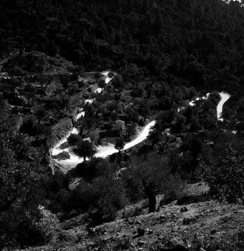 Road to Castell d'Alaró (Mallorca)